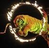 Цирки в Ижевске