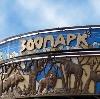Зоопарки в Ижевске